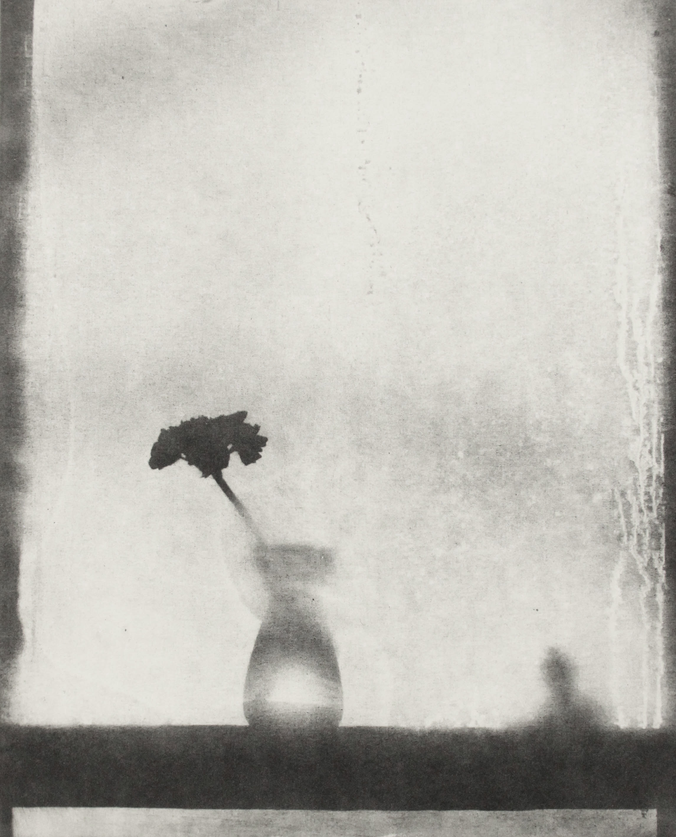 Lucy Bainbridge, Waiting for Spring, 2021